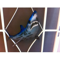 Mako shark cut out.
